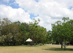 Nancy Cato Park, Dolphin Crescent and Noosa Parade, Noosaville